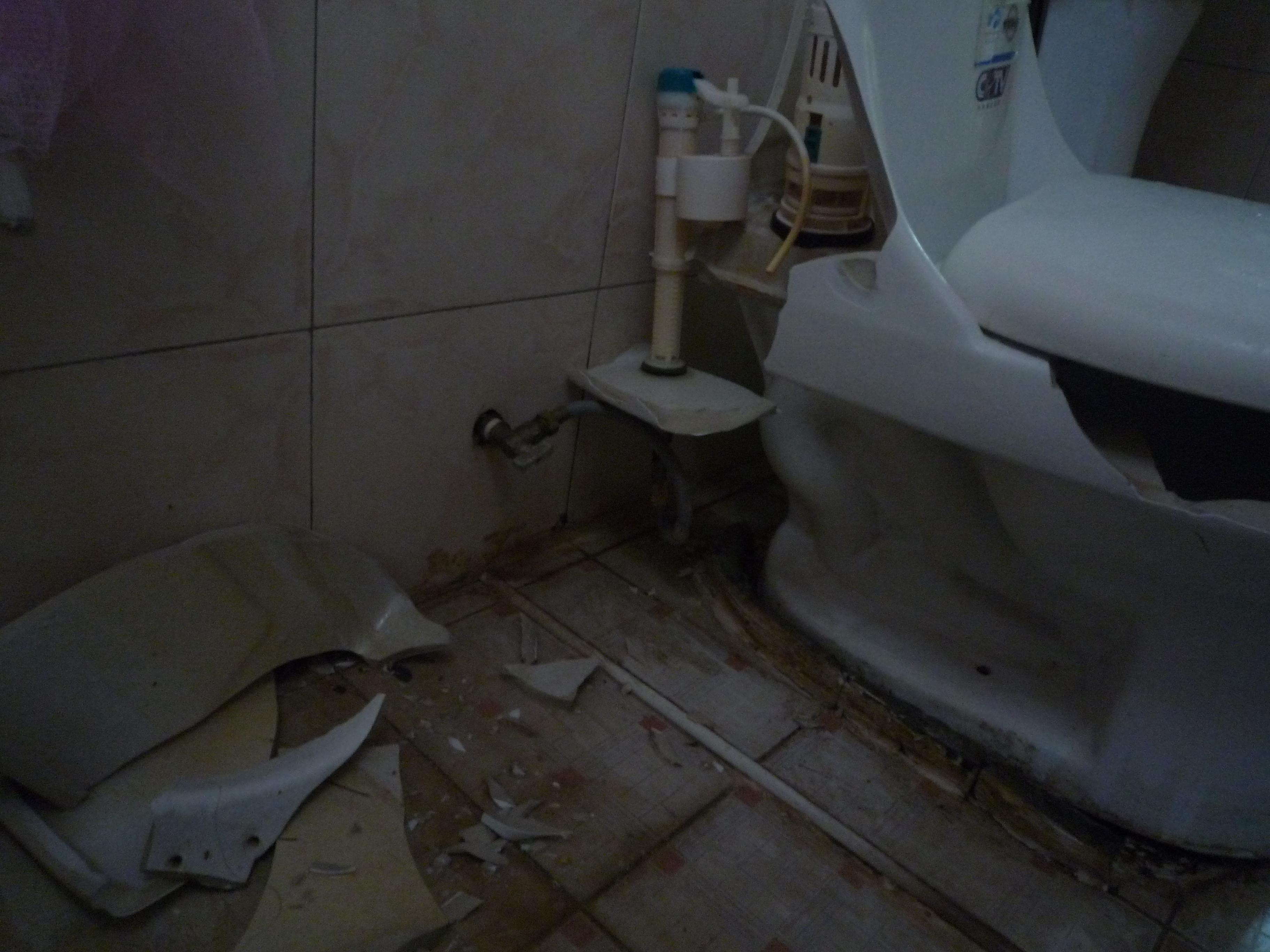 セブ島付近で巨大地震!