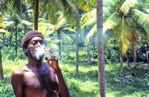 マリファナで稼ぐジャマイカ@クレイジージャーニー